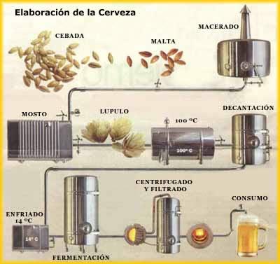 Proceso de elaboraci n de la cerveza for Elaboracion de estanques para piscicultura