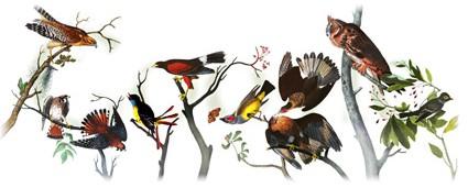 226 aniversario del nacimiento de john james audubon
