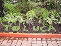 Jardin botánico de Toluca